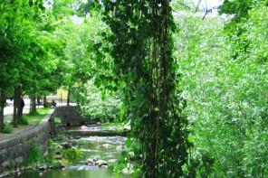Norrtälje ån